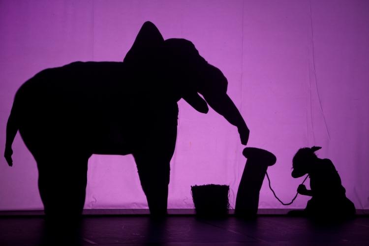 Da verwandeln sich die Schatten der Tänzer in fahrende Autos, Elefanten, aufgehende Blüten, Burgen oder Zentauren (Foto: Emmanuel Donny)