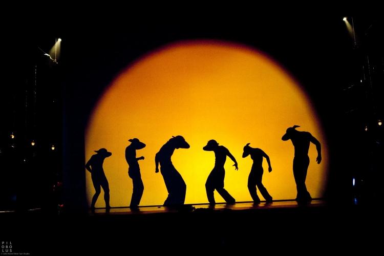 Mehrere Jahre hatte das PILOBOLUS Dance Theater mit der traditionellen Form des Schattentheaters experimentiert, bevor es diese zu einer neuen Form der Performance weiterentwickelte (Foto: John Kane)
