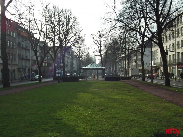 Wegen der Neugestaltung der Haltestelle Rheinstraße auf dem Ostwall (Baustelle UdU) mussten auf dem Ostwall in Krefeld neun Bäume gefällt werden. (xity-Foto: E. Aslanidou)