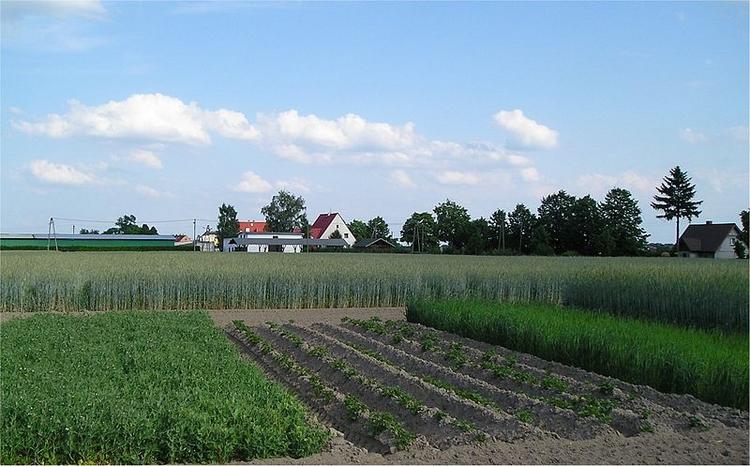 Landwirtschaftliche Betriebe in NRW auf dem Rückgang (Foto: Leslaw Zimny)