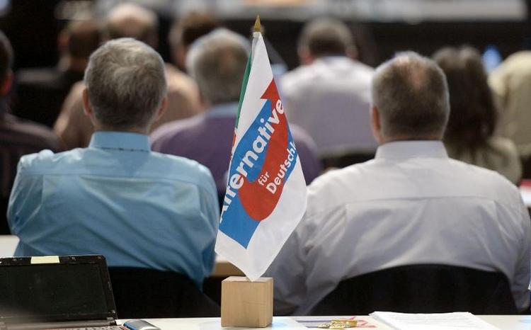 Anti-Euro-Partei AfD setzt Parteitag fort (© 2014 AFP)