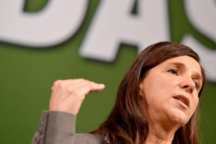 Grüne kritisieren Koalitions-Pläne zur Armutszuwanderung (© 2014 AFP)