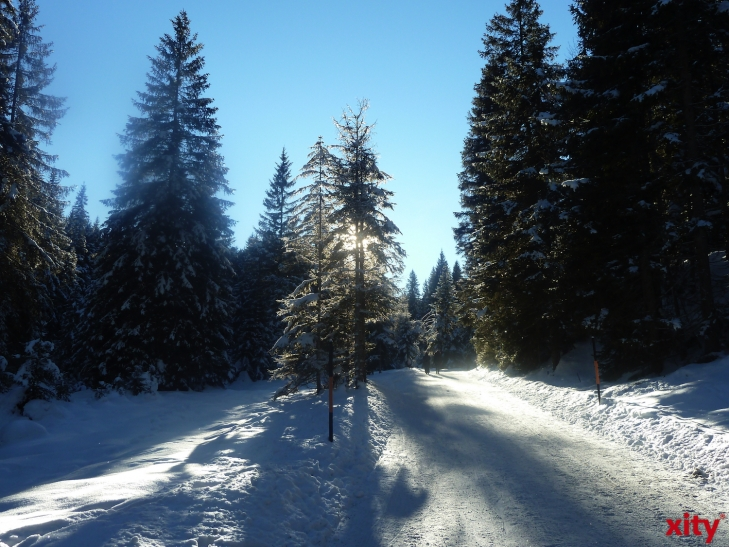 Schnee war vielerorts in den letzten JAhrzehnten Mangelware (xity-Foto: P.I.)