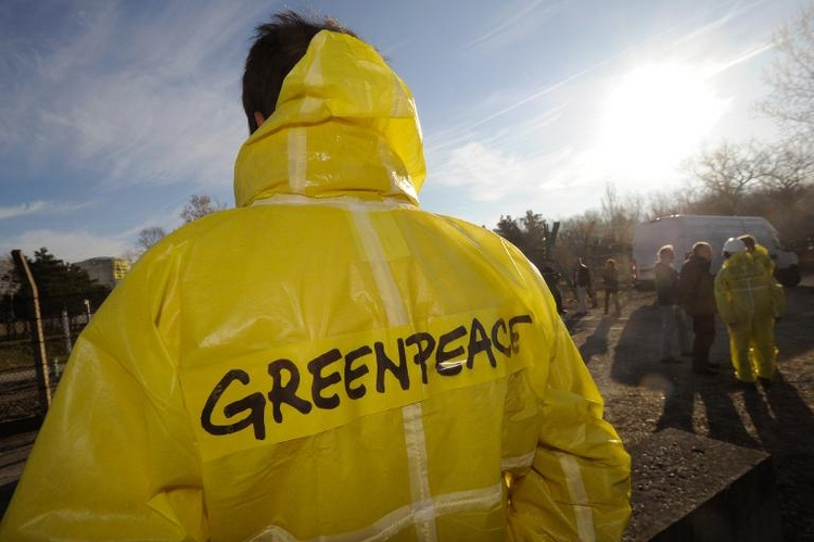Greenpeace warnt vor giftigem Chrom in Lederprodukten (© 2014 AFP)