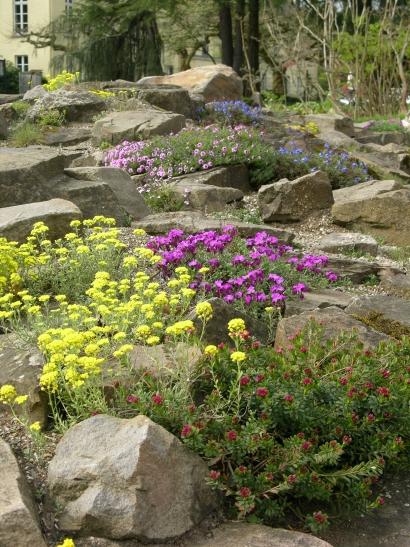 Gartenstunde im Botanischen Garten Krefeld. (xity-Foto: E. Aslanidou)