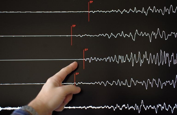 Erdbeben in Tschechien bis in Osten Deutschlands spürbar (© 2014 AFP)