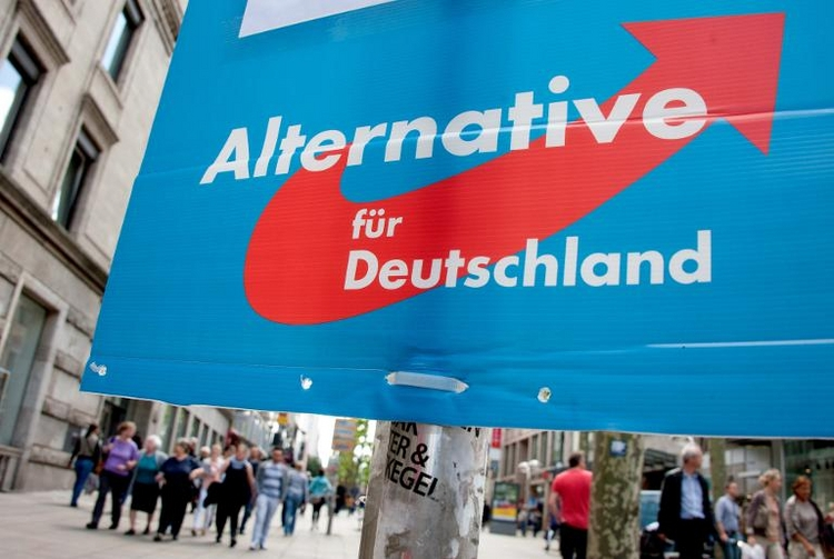 AfD in Umfrage zur Bundestagswahl bei fünf Prozent (© 2014 AFP)