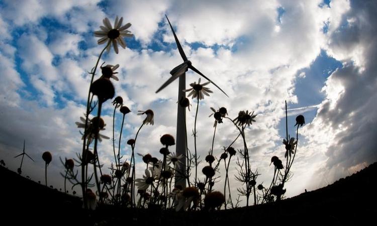 Hendricks kündigt mehr Anstrengungen für Klima an (© 2014 AFP)