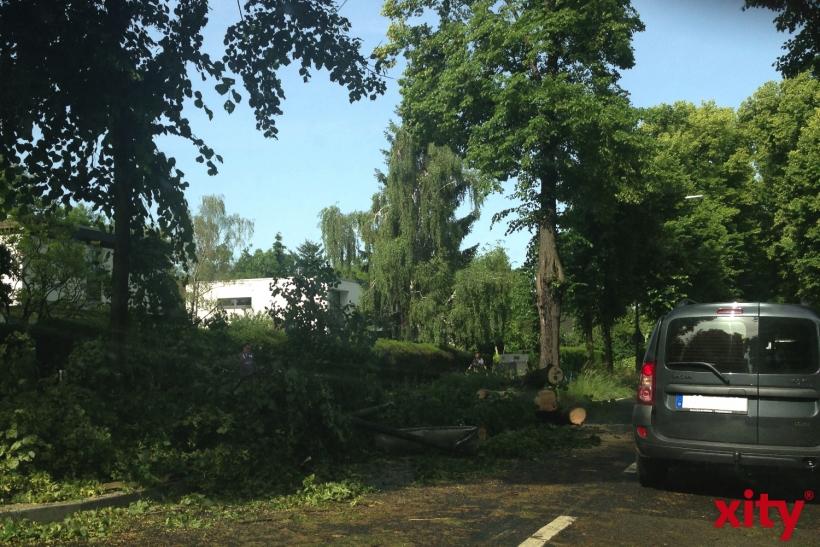 Auch für Dienstagabend wurde eine Sturmwarnung für Düsseldorf herausgegeben (xity-Foto: H. Müller)