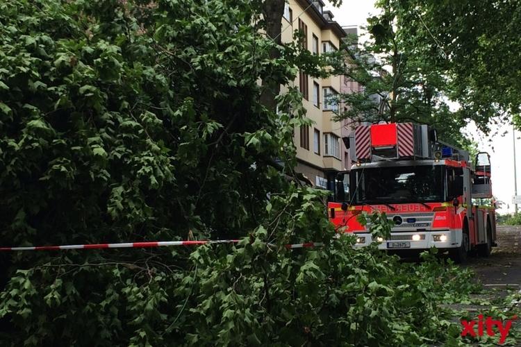 Aufräumarbeiten in Düsseldorf gehen besser voran als geplant (xity-Foto: P.I.)