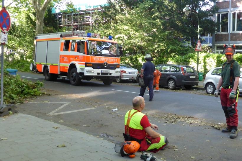 Bürger helfen mit (xity-Foto: P.I.)