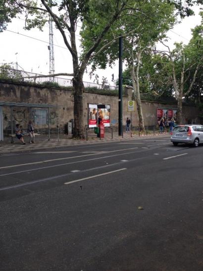An der Haltestelle Mintropplatz in der Harkortstraße drohten zwei schwere Äste im Bereich der Haltestelle unterhalb des Bahngeländes herunterzufallen (Foto: Feuerwehr Düsseldorf)