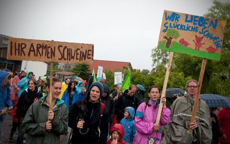 Umweltverbände protestieren gegen Massentierhaltung (© 2014 AFP)
