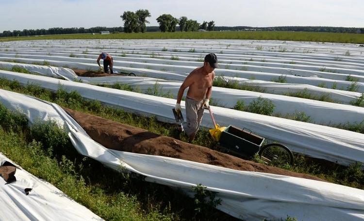 Ramsauer kündigt Nein-Stimmen zum Mindestlohn an (© 2014 AFP)