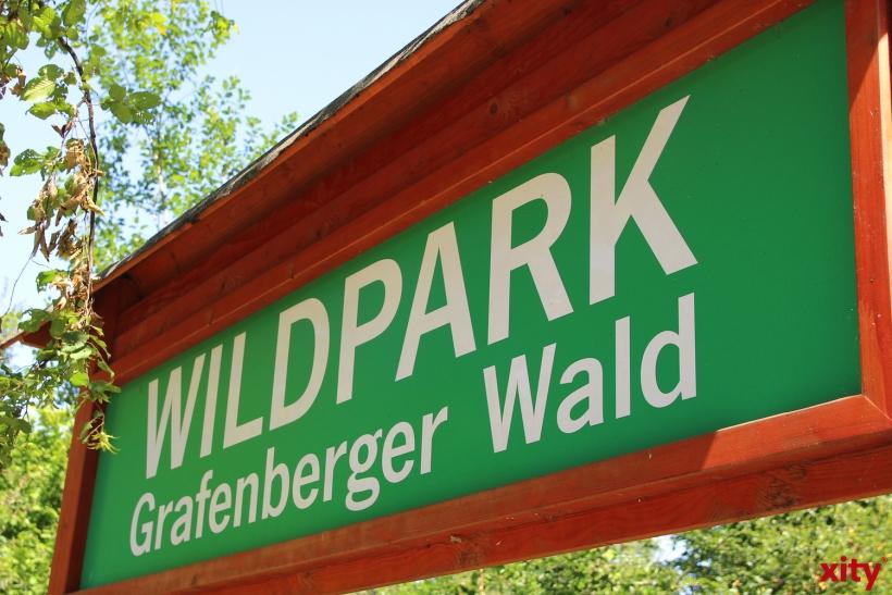 Wildpark im Grafenberger Wald (xity-Foto: H.Müller)
