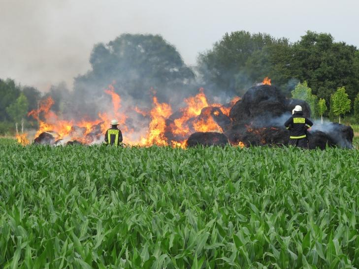 Brennende Strohmiete in Wittlaer (Foto: Feuerwehr Düsseldorf)