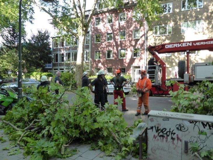 """Seitdem Sturm """"Ela"""", der am Pfingstmontagabend über die Landeshauptstadt Düsseldorf hinwegzog, laufen die Aufräumarbeiten auf Hochtouren (xity-Foto: P.I.)"""