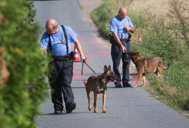 Festnahme nach tödlichen Schüssen auf Polizisten (© 2014 AFP)