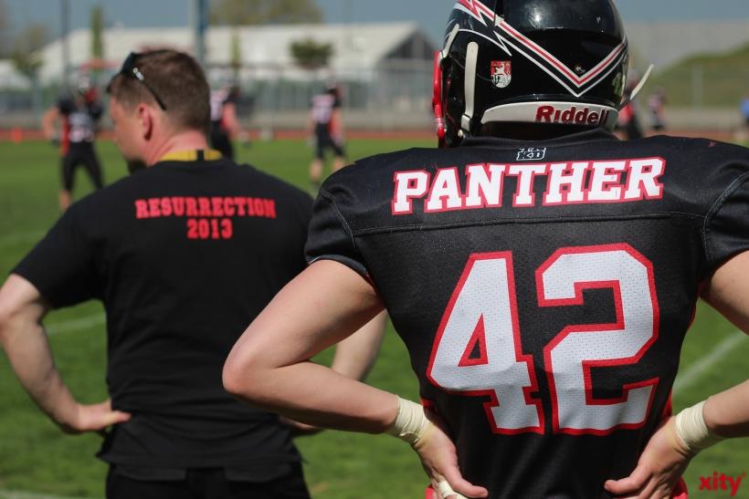 Panther empfangen die New Yorker Lions