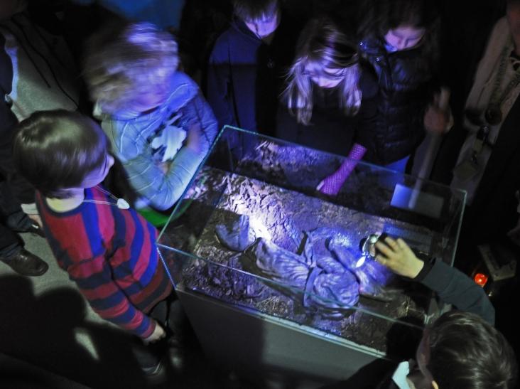 Mit der Taschenlampe durchs Neanderthal (Foto: Neanderthal Museum)
