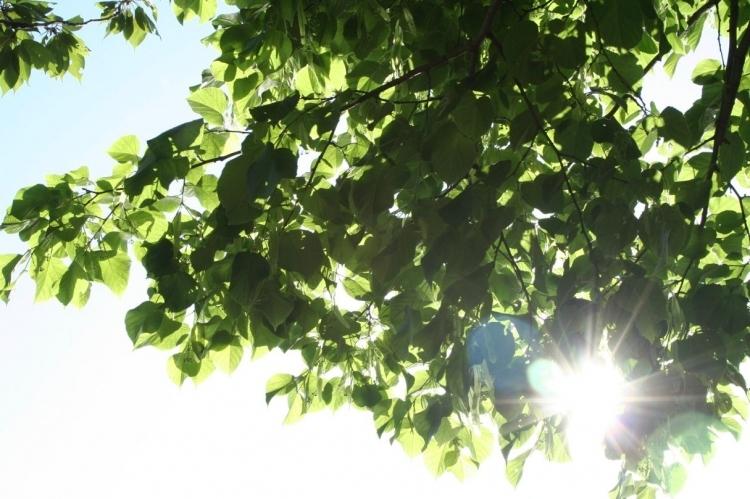 """""""Unsere Sonne - der Stern von dem wir leben"""" ist einer der naturwissenschaftlichen Vorträge in der VHS Krefeld. (xity-Foto: M. Völker)"""