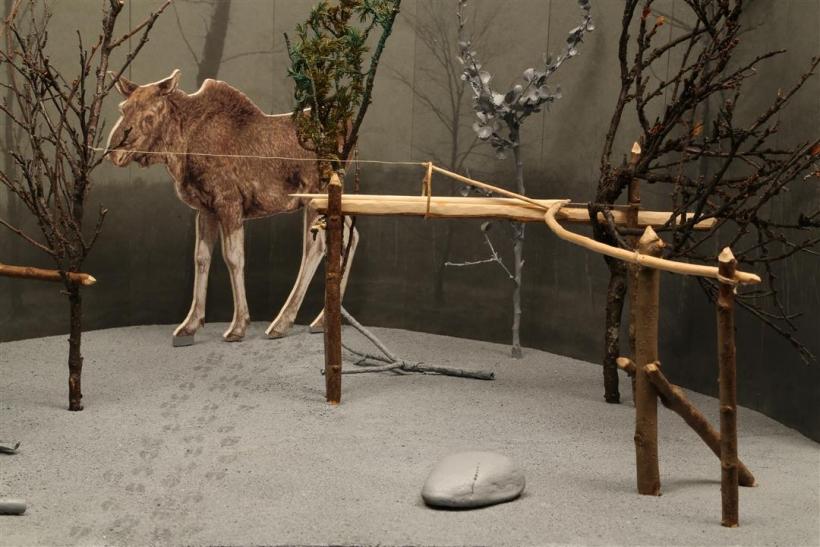 Elchfalle (Foto: Neanderthal Museum)