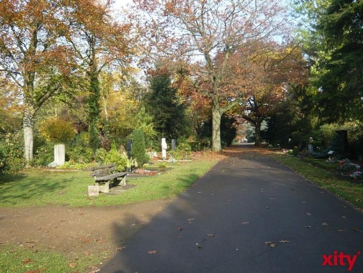 """Unter dem Motto """"Lichtblicke"""" werden die Lindenallee am Eingang und die Kapelle des Nordfriedhofes von Freitag, 31. Oktober, bis Sonntag, 2. November 2014, beleuchtet (xity-Foto: P.I.)"""