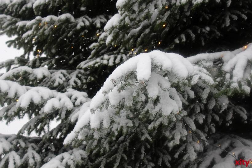 Kälte ist nicht nur unangenehm, sie birgt auch große Gefahren, denn eine Erfrierung droht nicht erst bei Minusgraden (xity-Foto: P. Basarir)