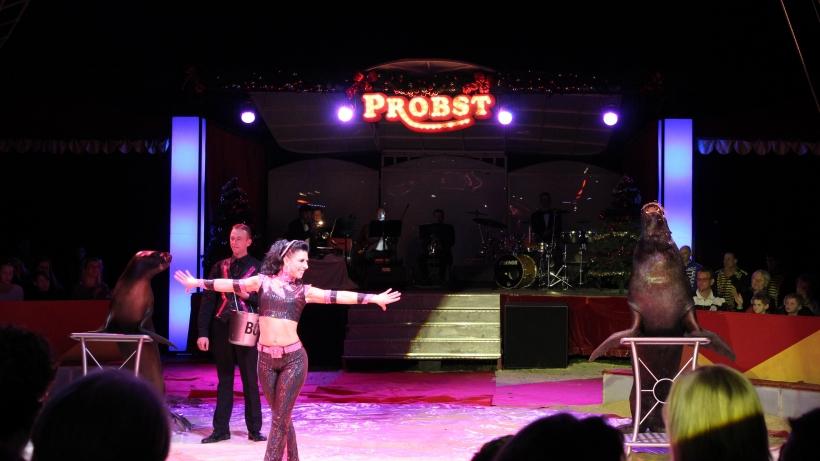 Circus Probst präsentiert den Krefelder Weihnachtscircus. (xity-Foto. E. Aslanidou)