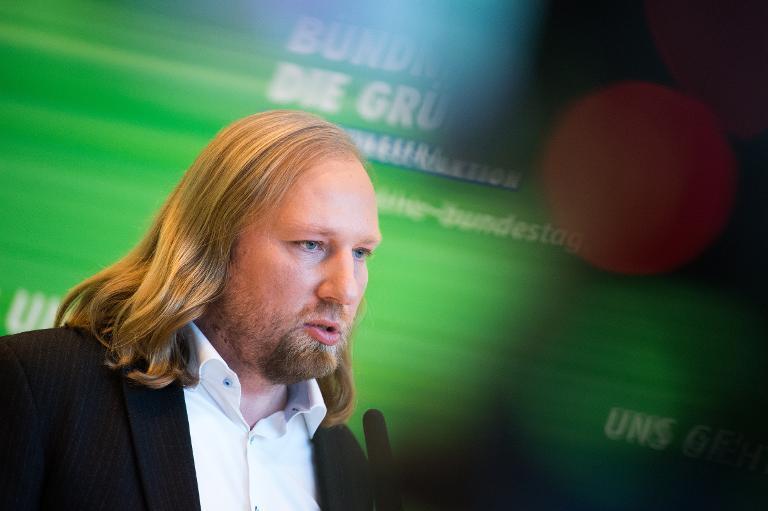 Grünen-Fraktionschef Hofreiter ist Hobbymaler (© 2015 AFP)