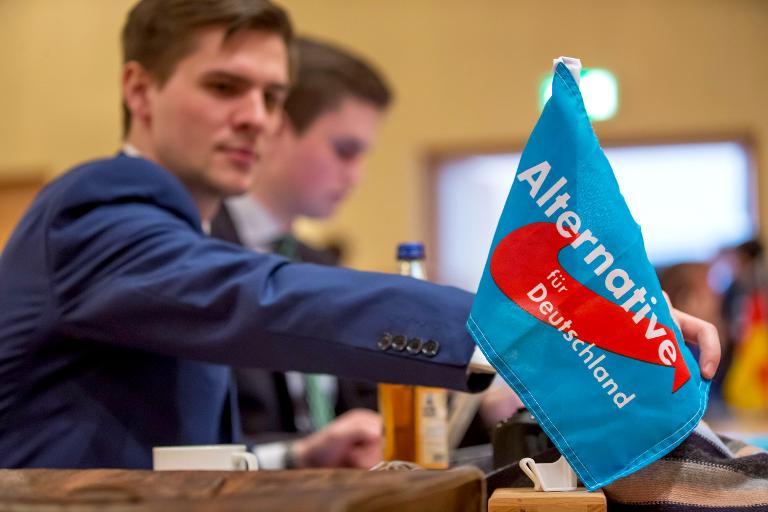 AfD will Finanzschlamassel durchleuchten lassen (© 2015 AFP)