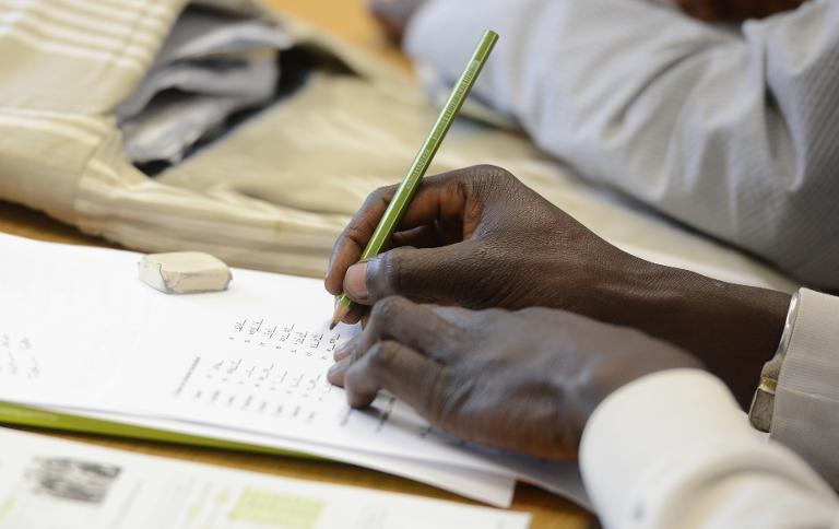 Grüne fordern Programm für arbeitswillige Flüchtlinge (© 2015 AFP)