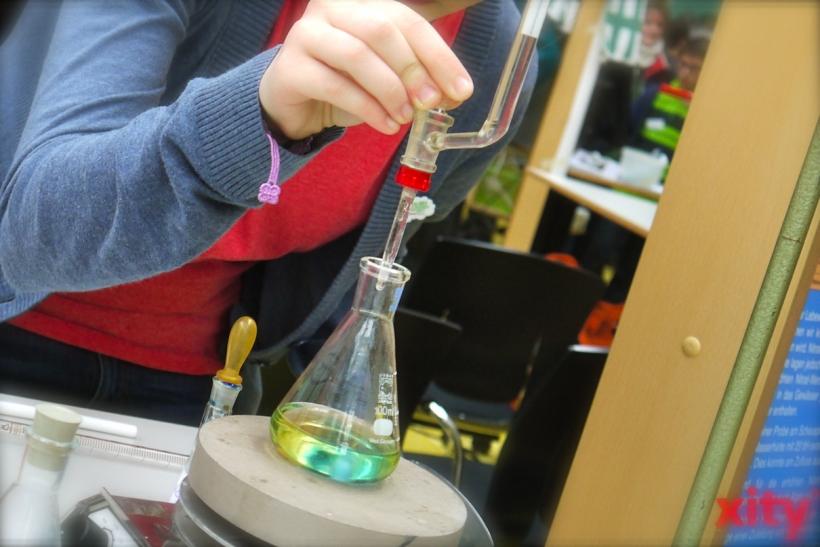 Geforscht und experimentiert wird zu Themen wie Wasser, Luft, Papier oder Pflanzen und Tiere (Foto: xity)