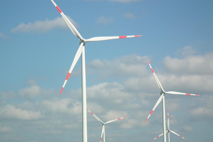 Deutsche Wildtier Stiftung kritisiert Standorte von Windkrafträdern in Wäldern (Foto: xity)
