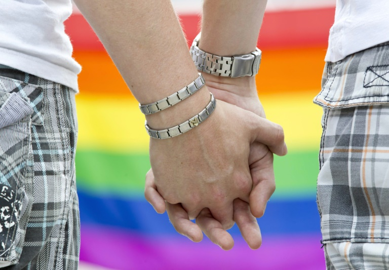 Berliner CDU stellt Ergebnis der Homo-Ehe-Befragung vor (© 2015 AFP)