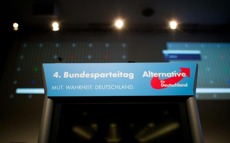 AfD trifft sich zu Bundesparteitag in Hannover (© 2015 AFP)