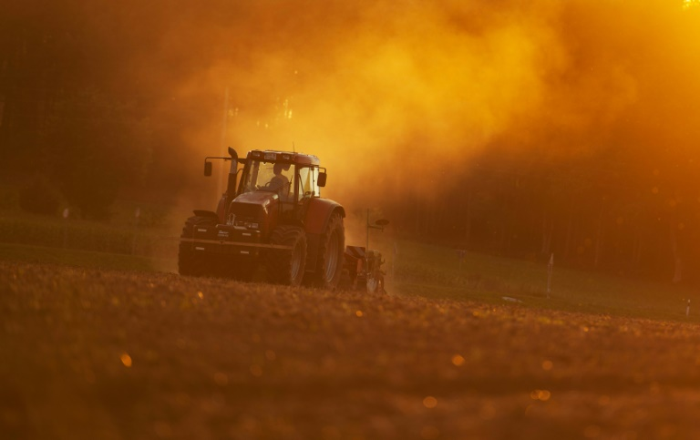 """Schmidt: Bauern dürfen nicht """"Sündenbock der Klimaretter"""" werden (© 2015 AFP)"""