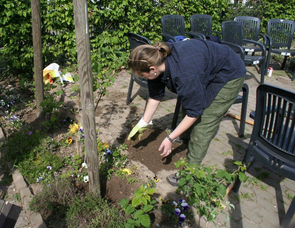 In Ratingen startet bald das Projekt Urban Gardening (Foto: xity)