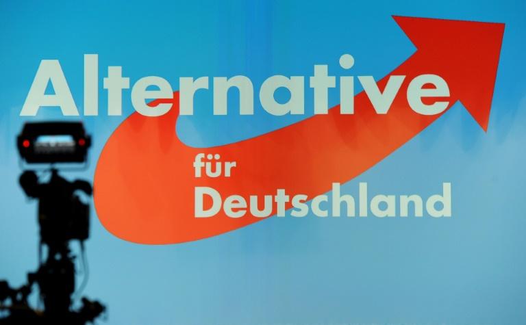 SPD will angeblich AfD vom Verfassungsschutz beobachten lassen (© 2016 AFP)
