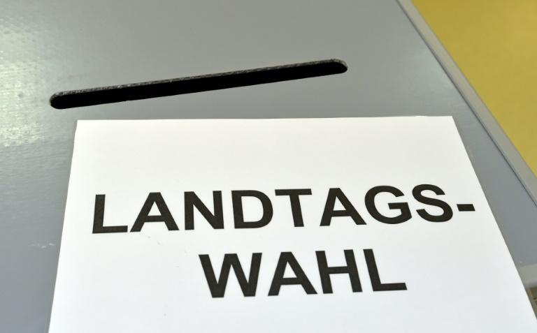 Umfrage: AfD kommt in Sachsen-Anhalt auf 17 Prozent (© 2016 AFP)