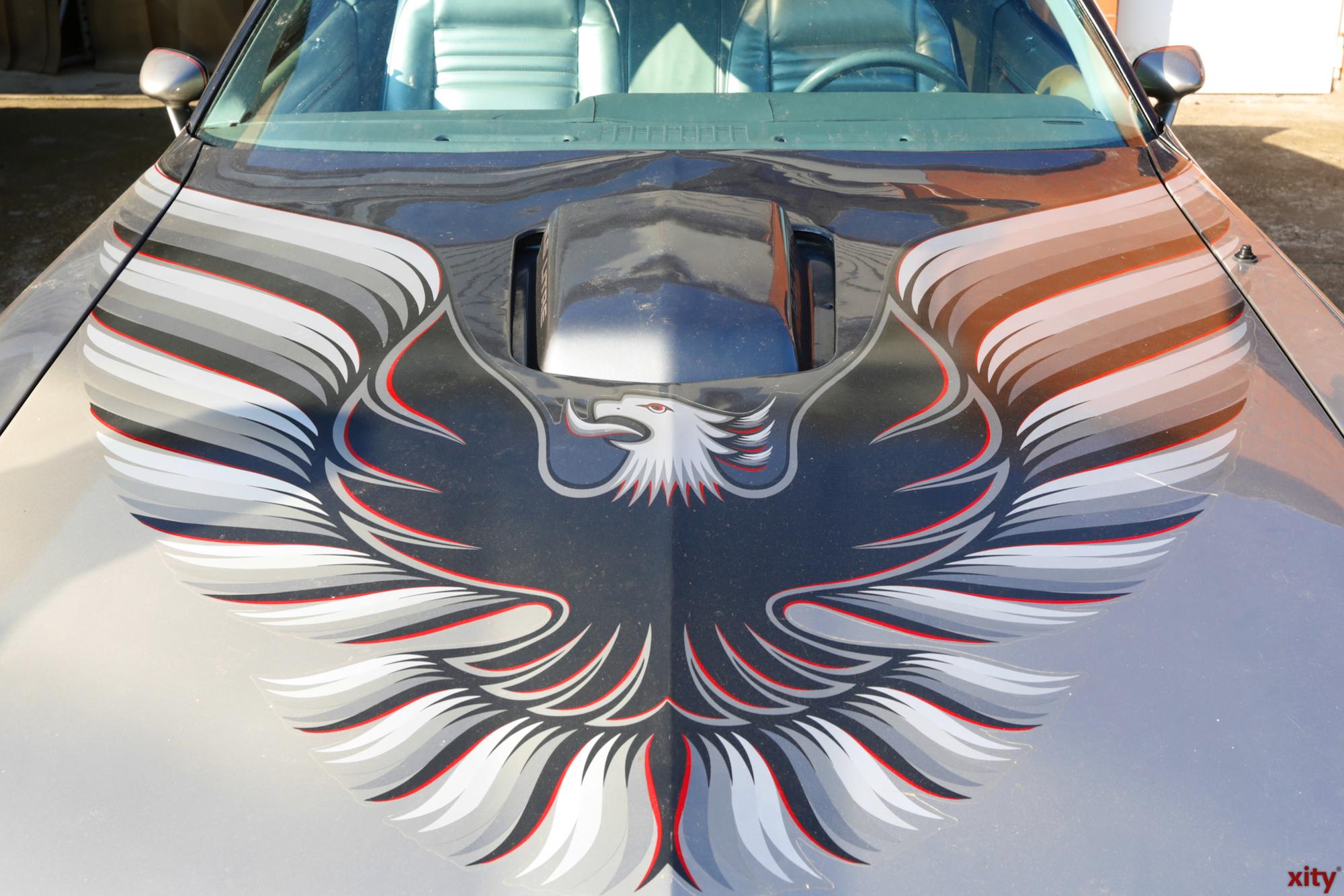 Ein Transam mit Adler auf der Haube (Foto: xity)
