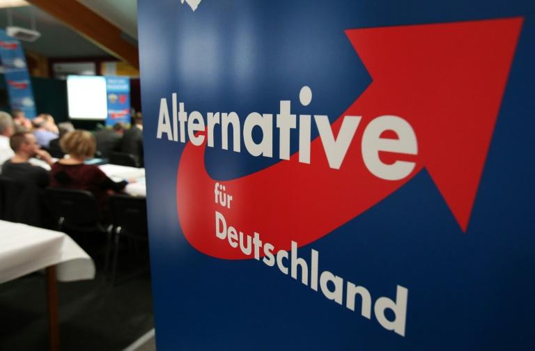 Umfrage: AfD in Nordrhein-Westfalen derzeit drittstärkste Partei (© 2016 AFP)