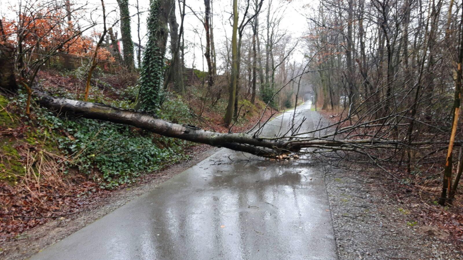 Non-Stop Stress für lokale Rettungsdienste (Foto: OTS)