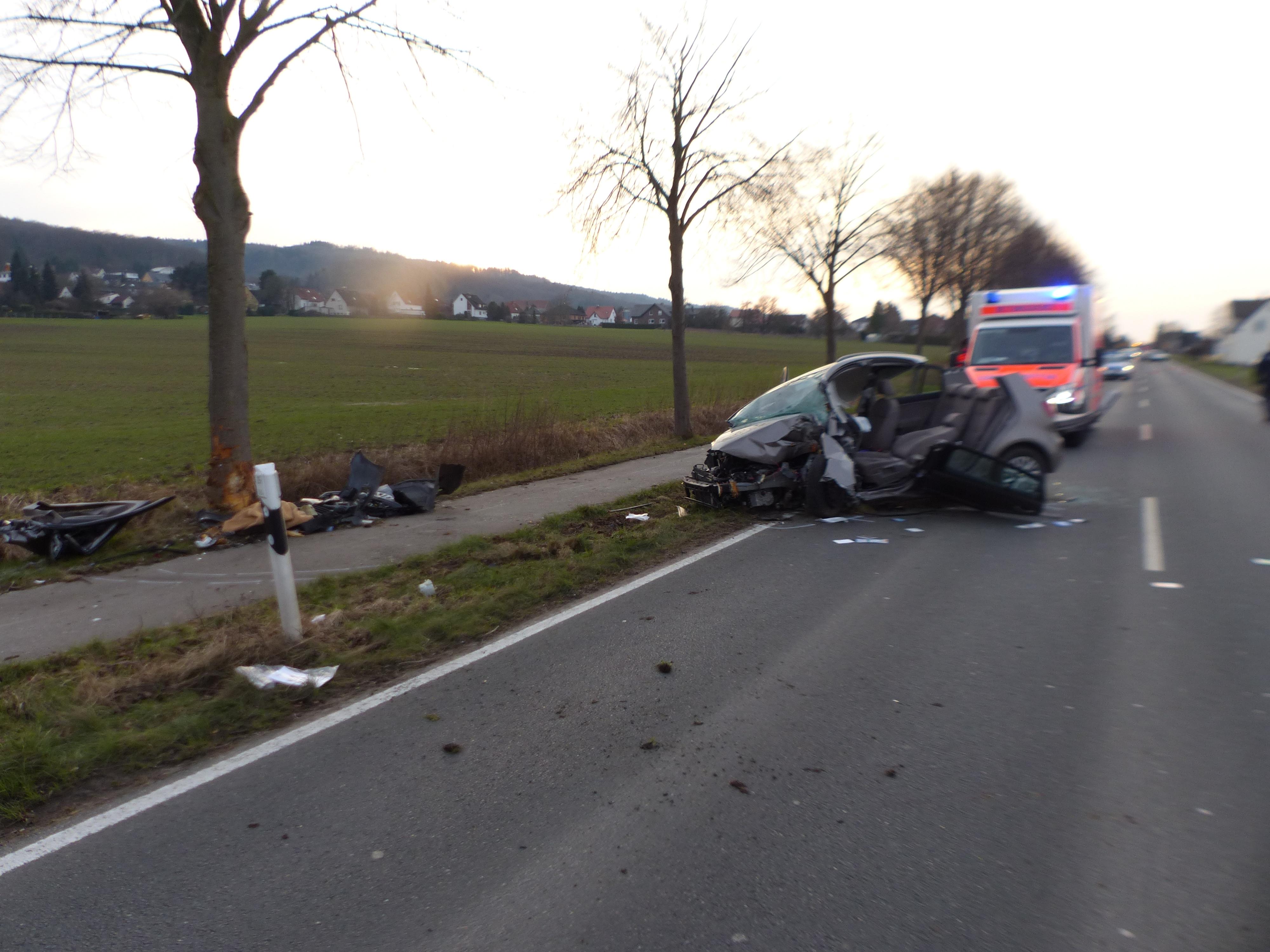 Autofahrer verstirbt nach Verkehrsunfall (Foto: OTS)