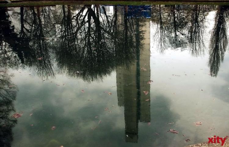Teich um den Grönen Jong im Hofgarten wird entschlammt (Foto: xity)