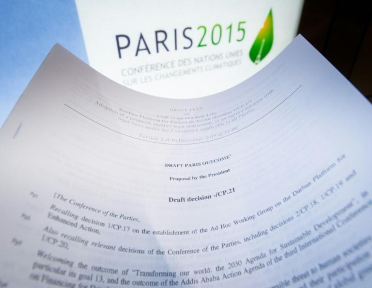 Deutsche Klimaschützer fordern Umsetzung des Pariser Abkommens (© 2016 AFP)