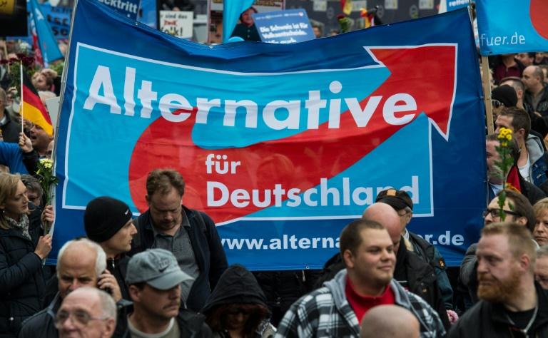 AfD wird bei hessischen Kommunalwahlen laut Zwischenstand drittstärkste Kraft (© 2016 AFP)