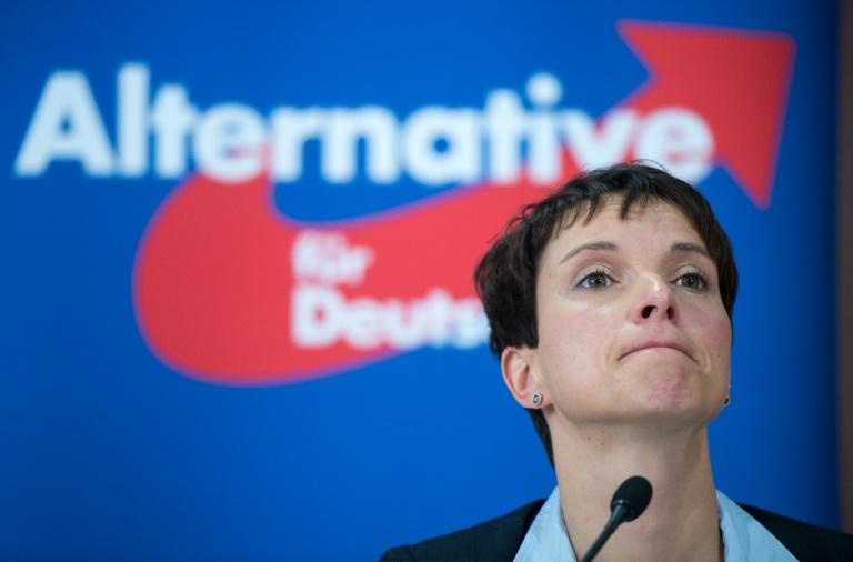Petry sieht AfD-Ergebnis in hessischen Kommunen als Signal für Landtagswahlen (© 2016 AFP)