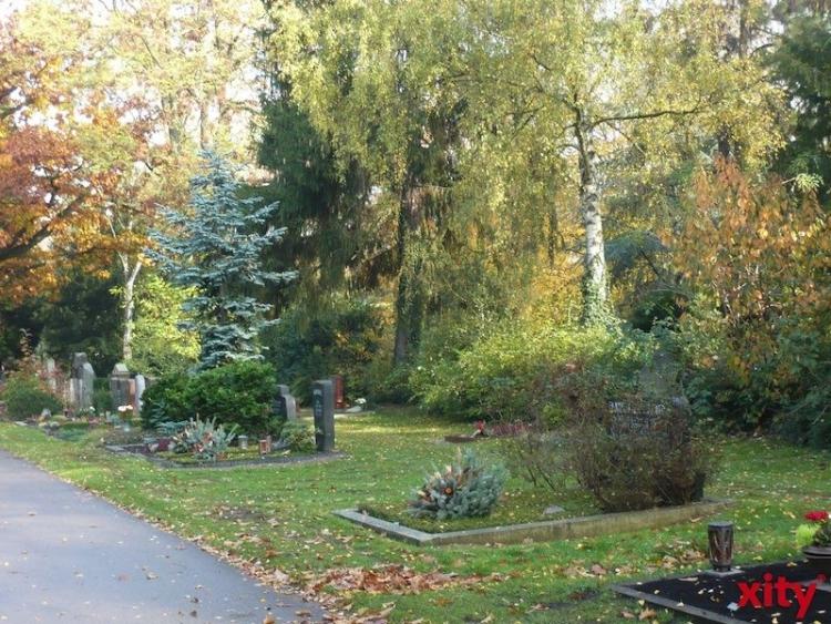 Der alte Golzeimer Friedhof von seiner botanischen Seite (Foto: xity)