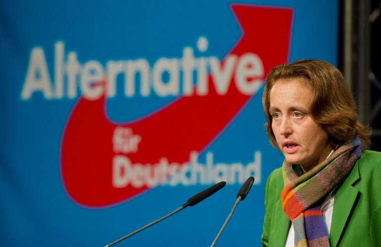 """""""Spiegel"""": AfD will in neuem Parteiprogramm auf Islamkritik setzen (© 2016 AFP)"""